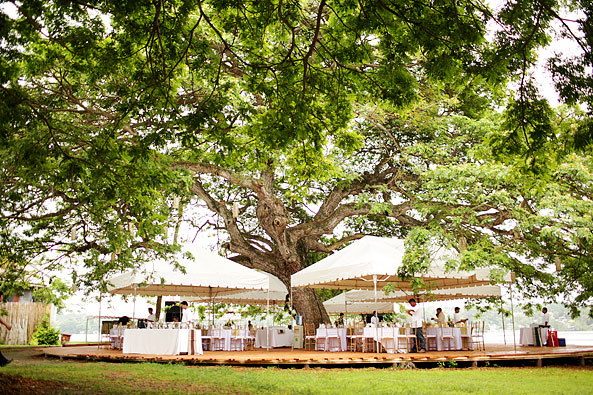 Reception can be held at the big tree outside the church